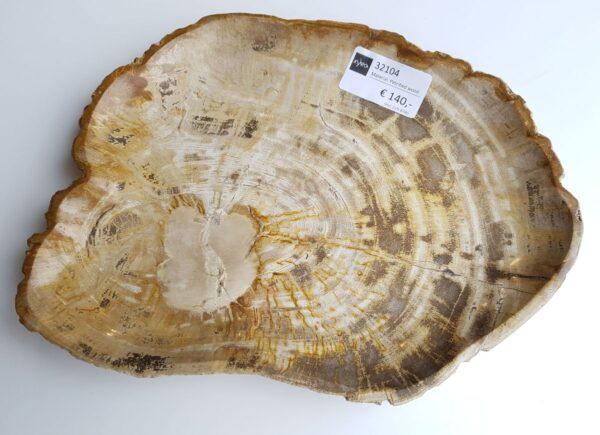 Assiette bois pétrifié 32104