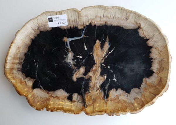 Plato madera petrificada 32045