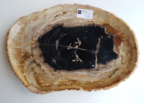 Plato madera petrificada 32050