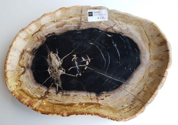 Plato madera petrificada 32052