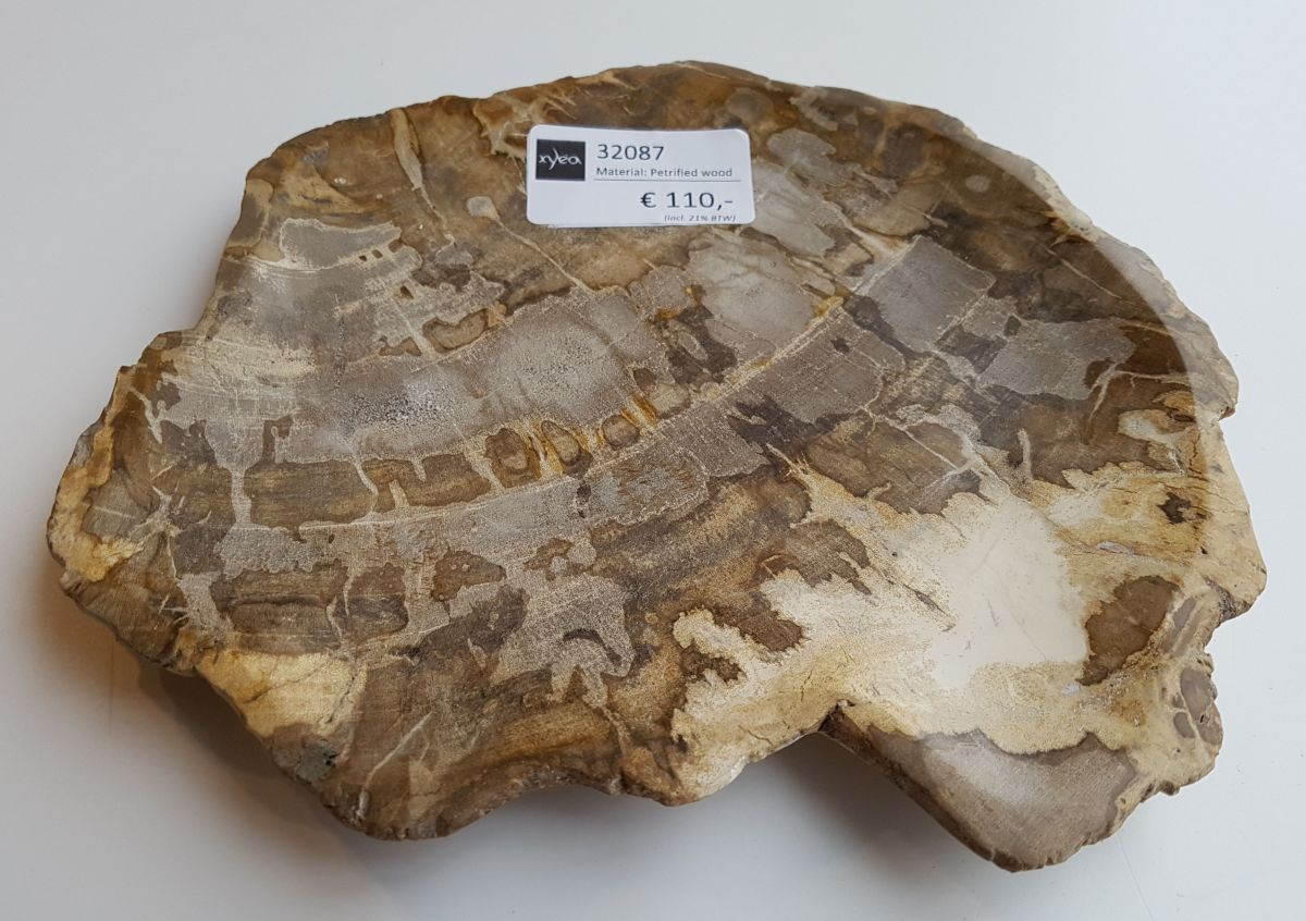 Plato madera petrificada 32087