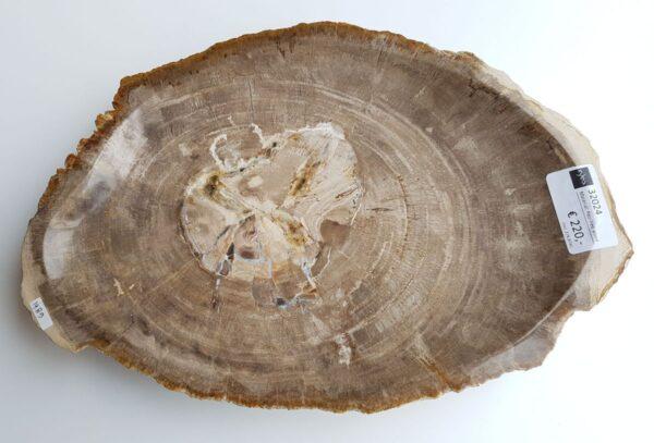 Bowl petrified wood 32024
