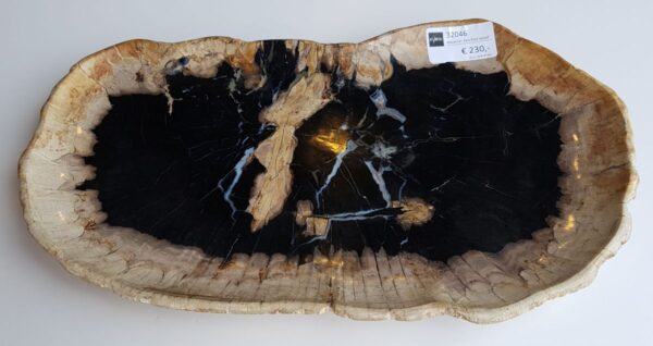 Plate petrified wood 32046