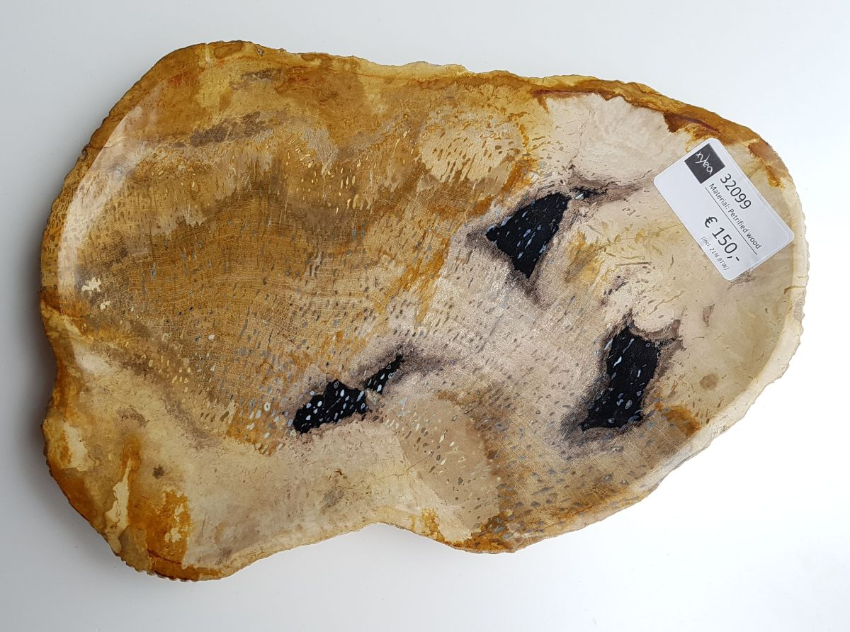 Plate petrified wood 32099