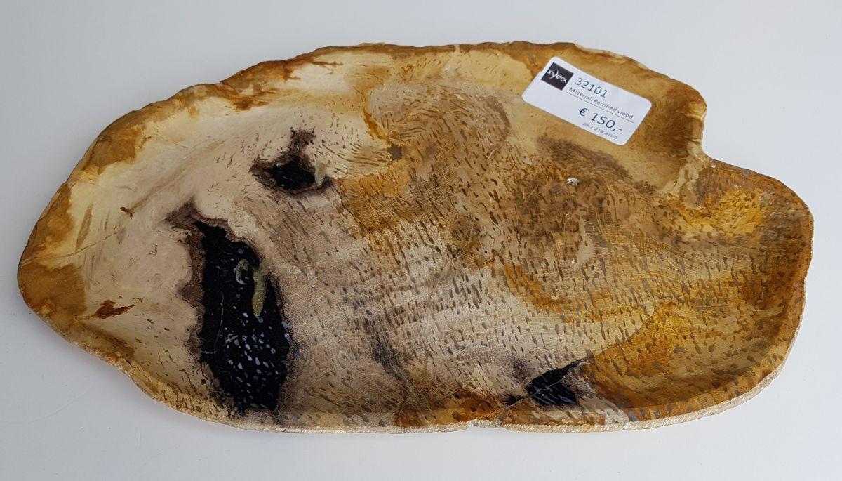 Plate petrified wood 32101