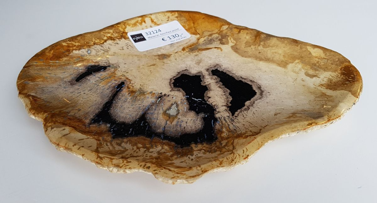 Plate petrified wood 32124