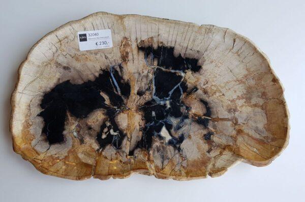 Teller versteinertes Holz 32040