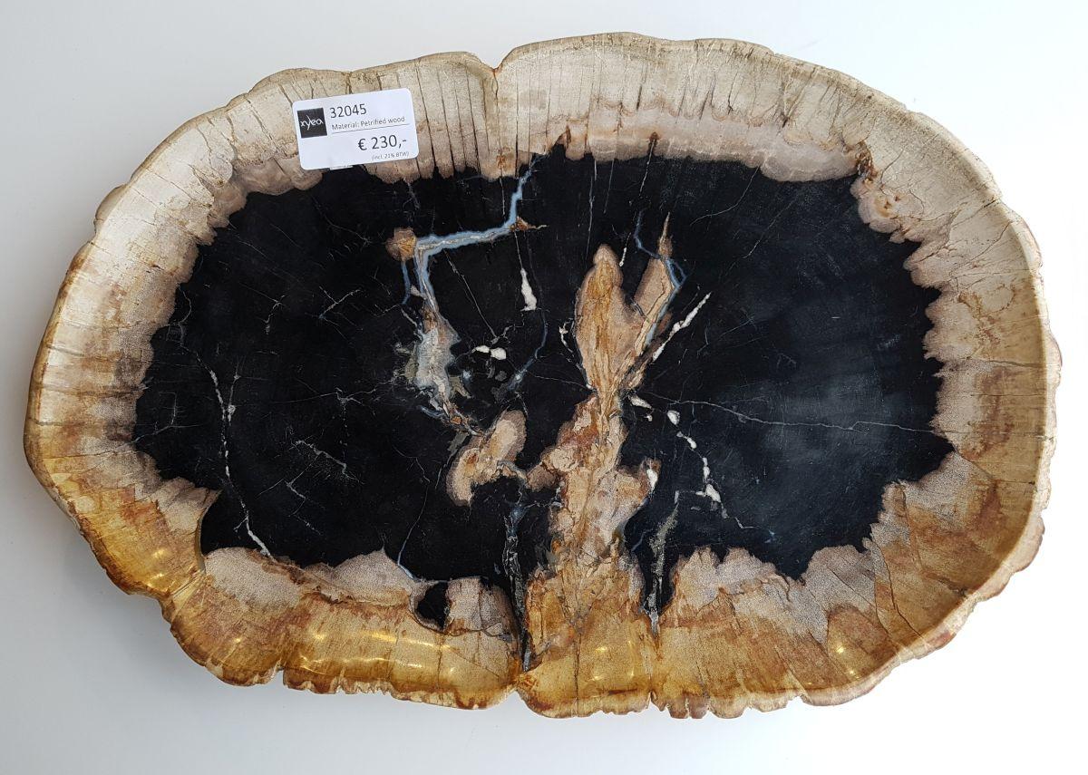 Teller versteinertes Holz 32045