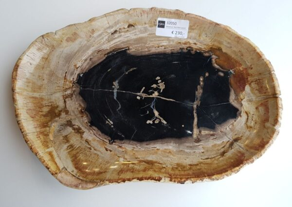 Teller versteinertes Holz 32050