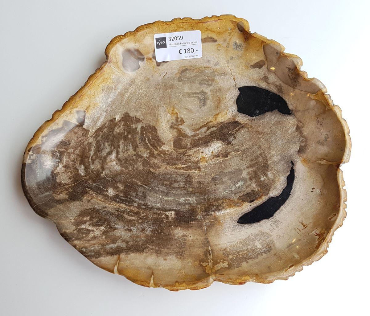 Teller versteinertes Holz 32059