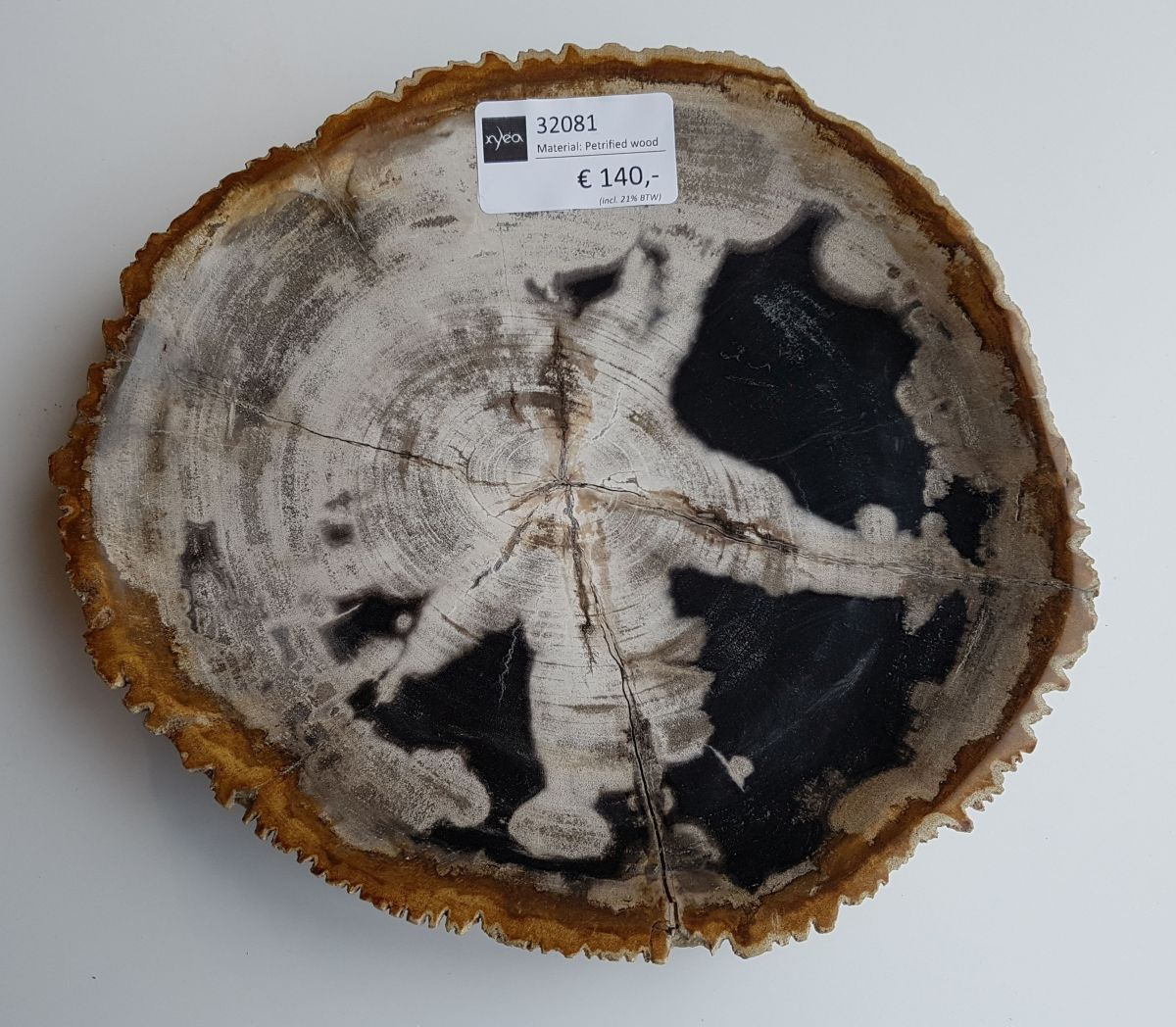 Teller versteinertes Holz 32081