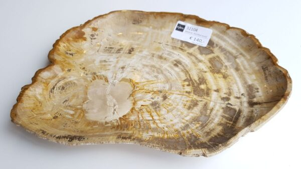 Teller versteinertes Holz 32104