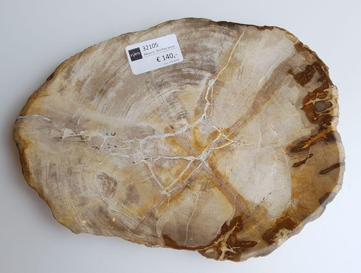 Teller versteinertes Holz 32105