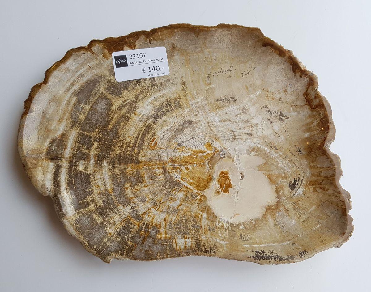 Teller versteinertes Holz 32107