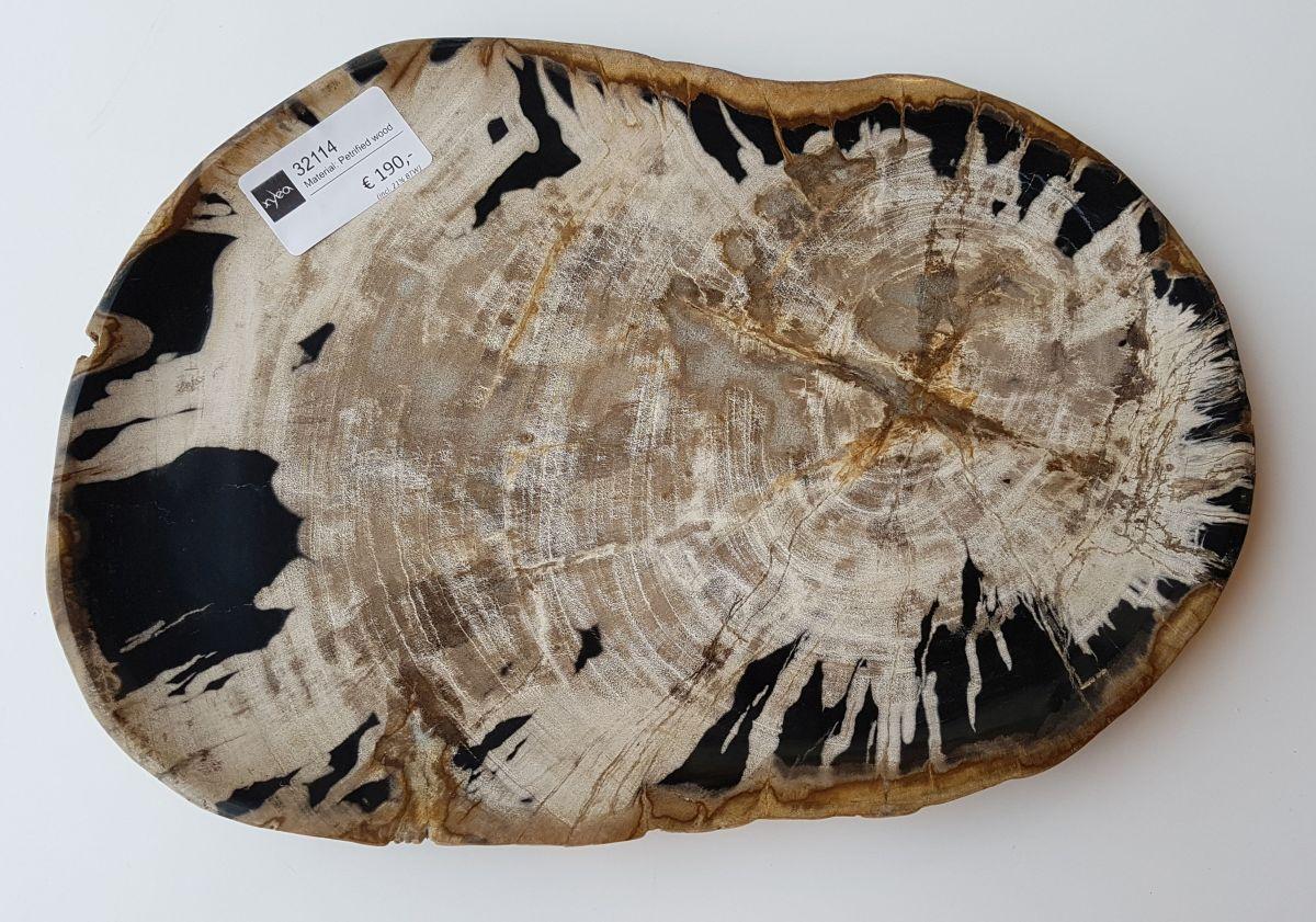 Teller versteinertes Holz 32114
