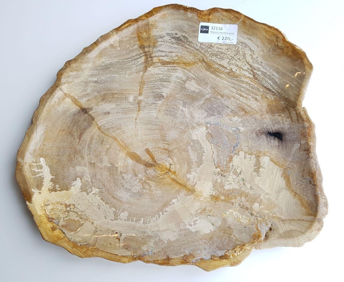 Teller versteinertes Holz 32116