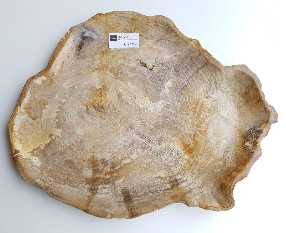 Teller versteinertes Holz 32120