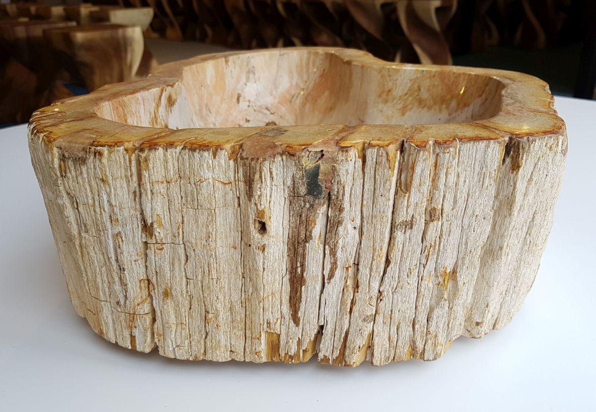 Waschbecke versteinertes Holz 32571