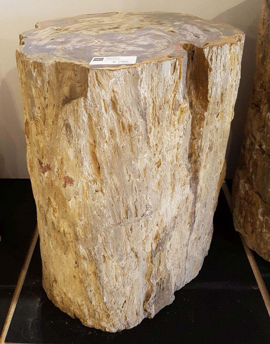 Table d'appoint bois pétrifié 30361