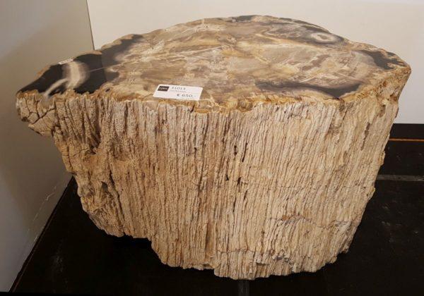 Table d'appoint bois pétrifié 31013