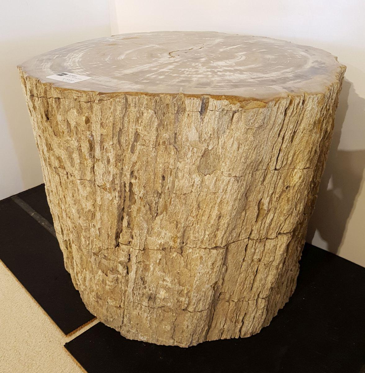 Table d'appoint bois pétrifié 32585