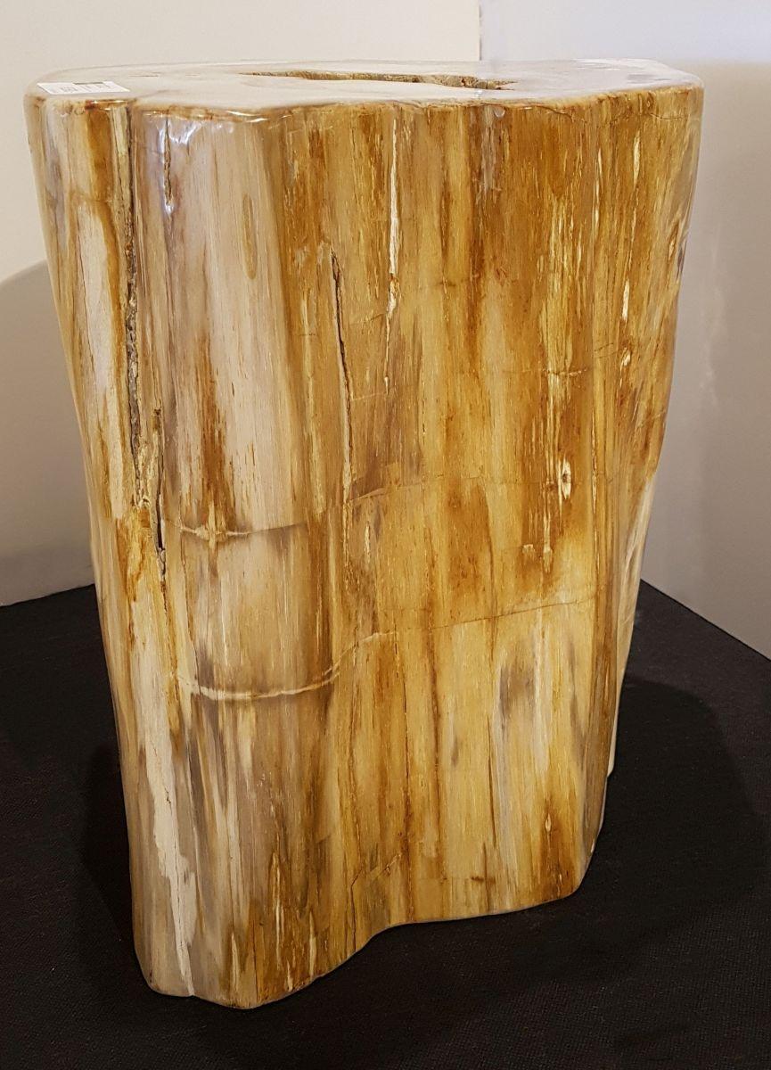 Table d'appoint bois pétrifié 81202