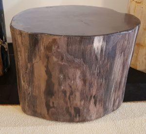 Side table petrified wood 0018