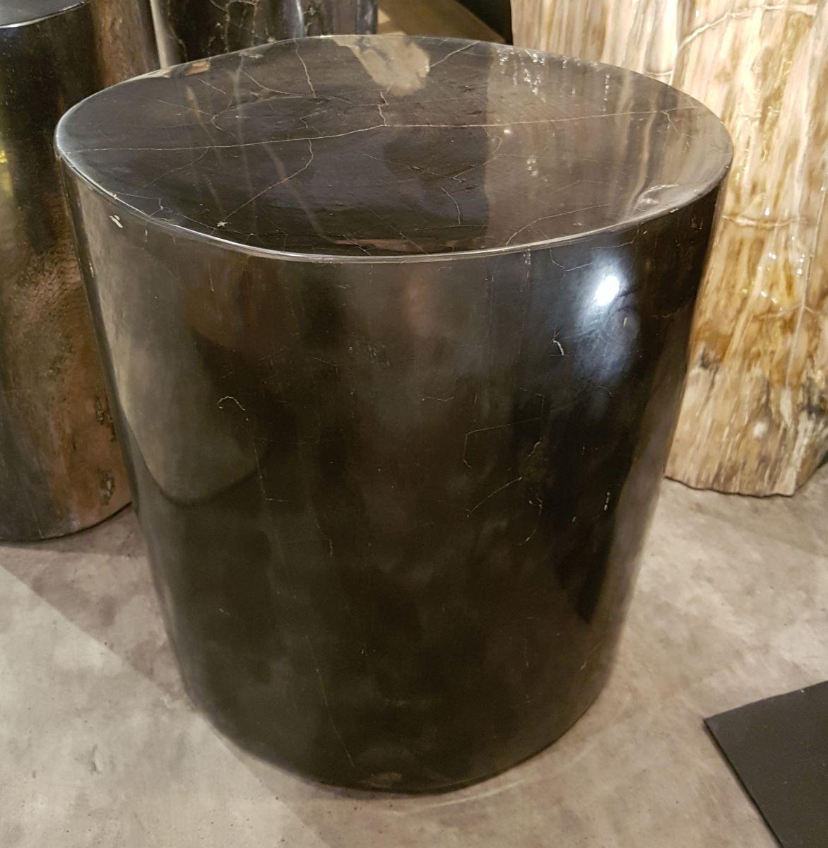 Side table petrified wood 27520