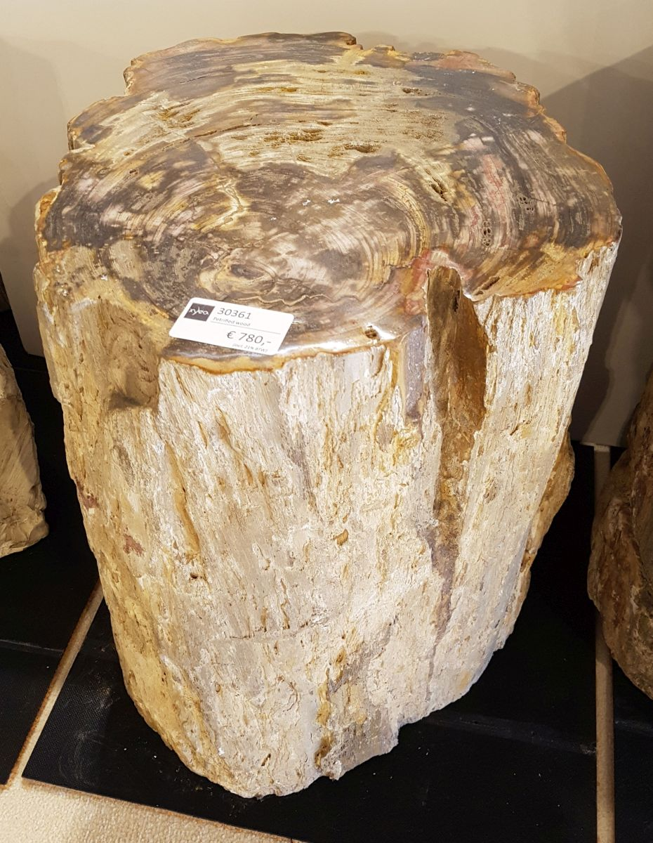 Side table petrified wood 30361