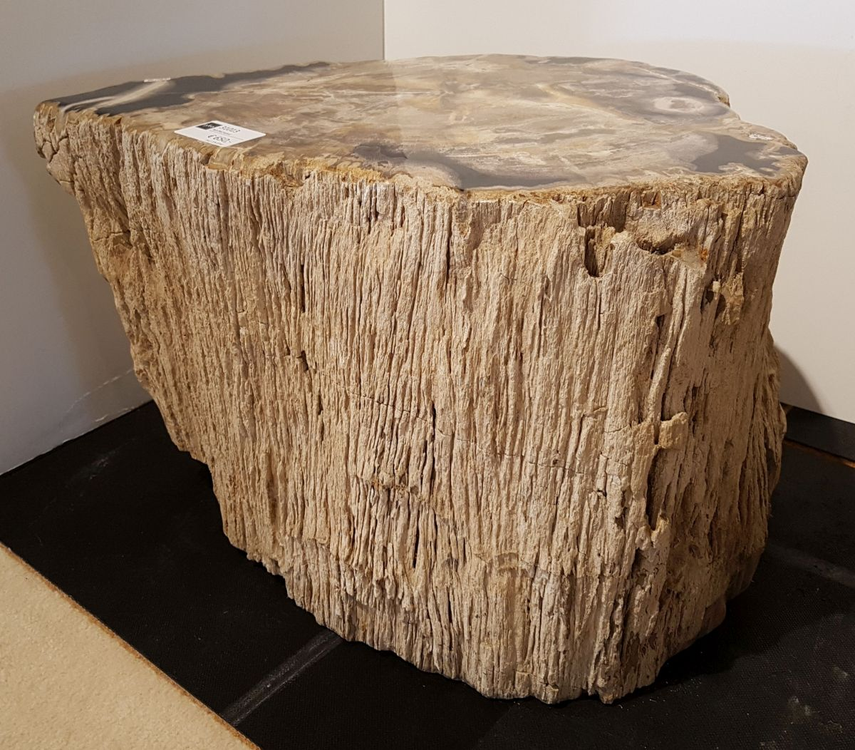 Side table petrified wood 31013