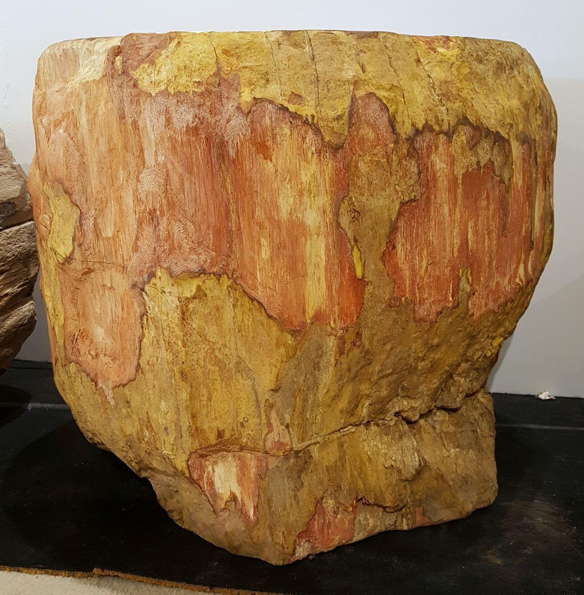 Side table petrified wood 32004