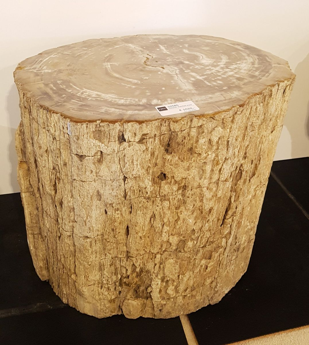 Side table petrified wood 32585