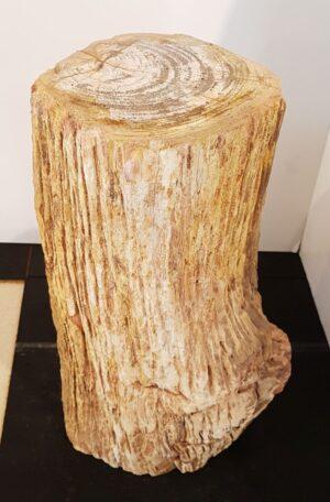 Bijzettafel versteend hout 30356