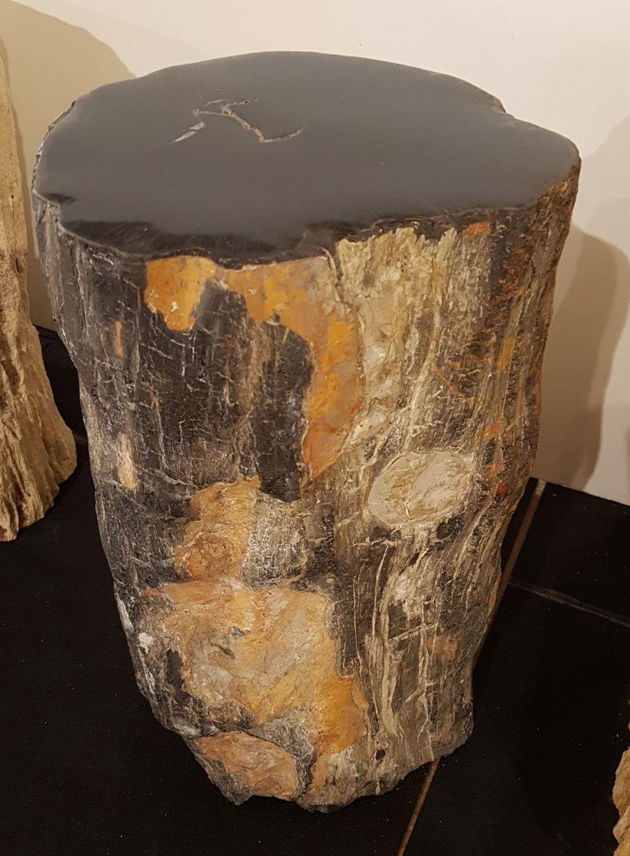 Bijzettafel versteend hout 32008