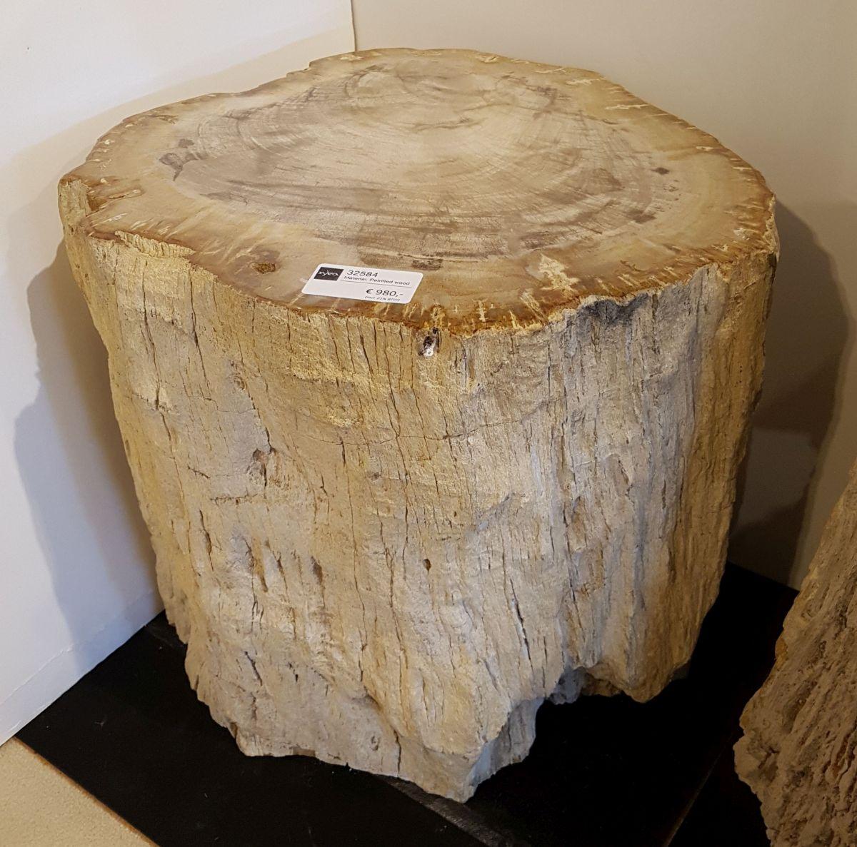 Bijzettafel versteend hout 32584