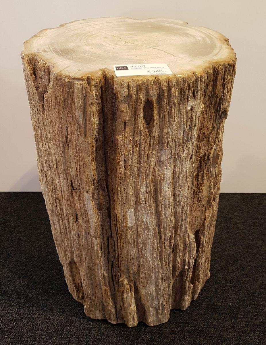 Bijzettafel versteend hout 32587