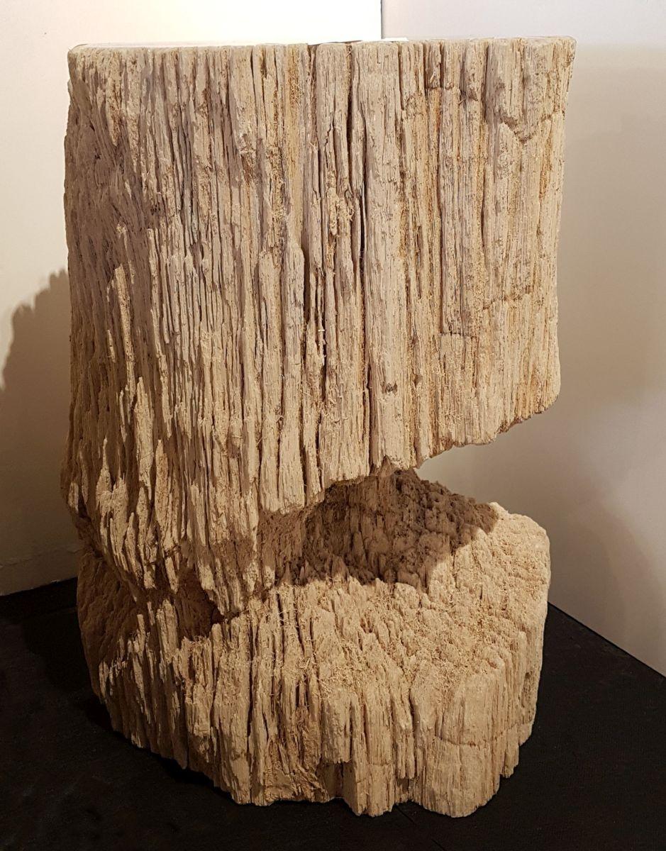 Bijzettafel versteend hout 32589