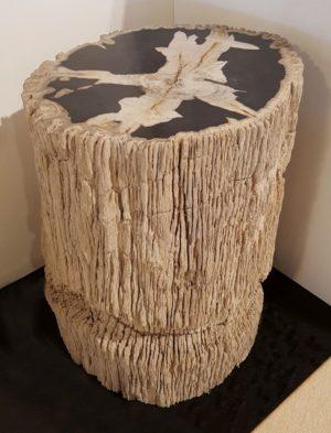 Beistelltisch versteinertes Holz 32590