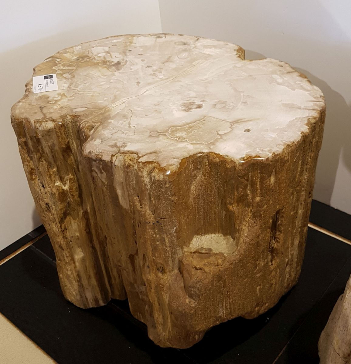Bijzettafel versteend hout 81226