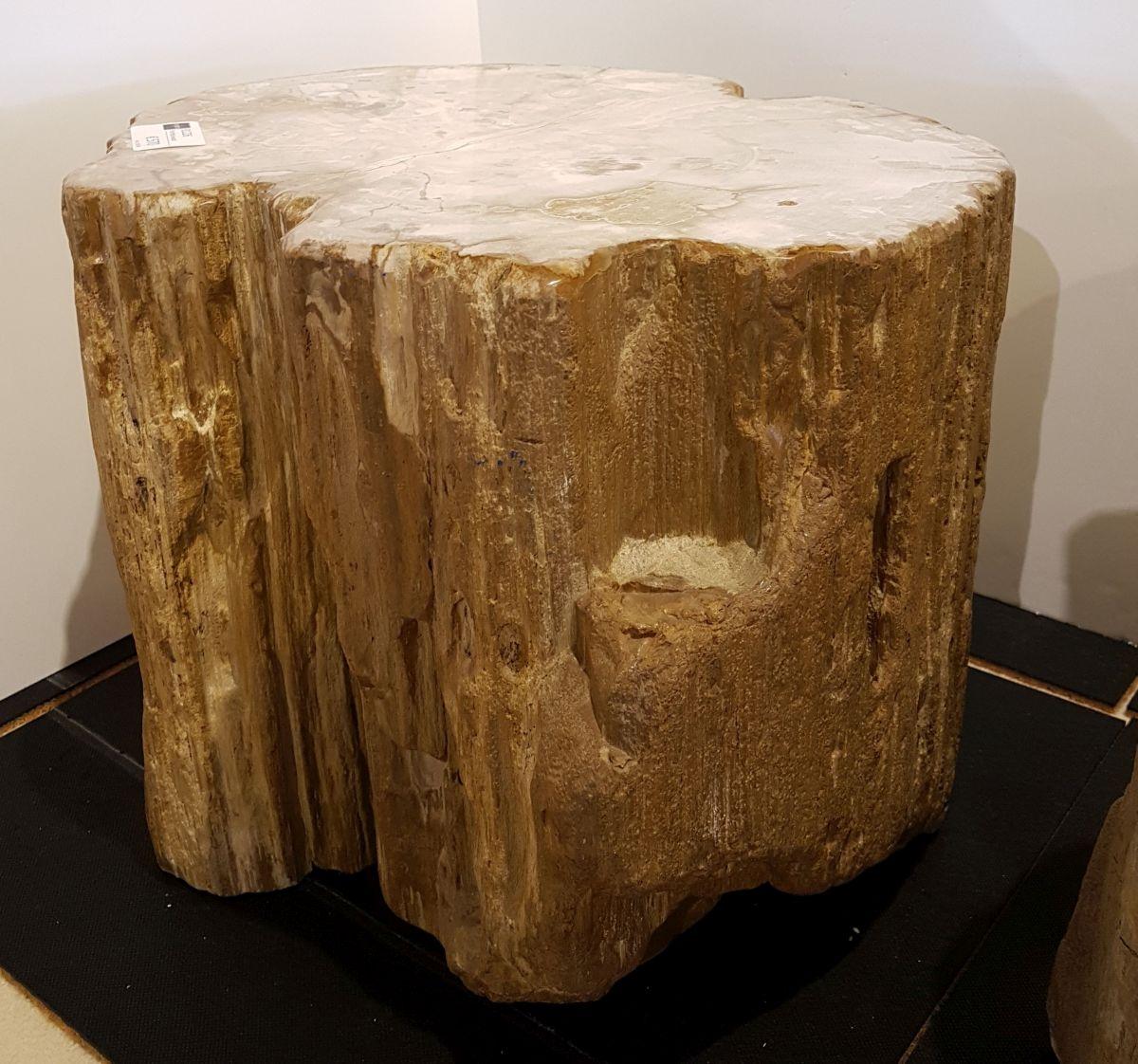 Beistelltisch versteinertes Holz 81226