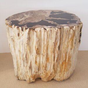 Beistelltisch versteinertes Holz 32005