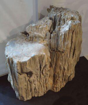 Pierre tombale bois pétrifié 101079