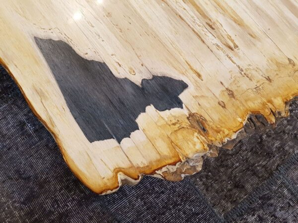 Coffee table petrified wood 28397