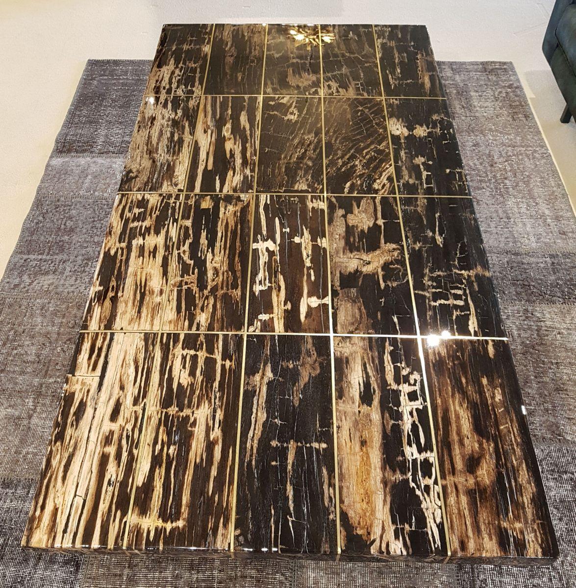 Couchtisch versteinertes Holz 22334