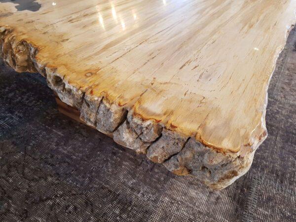 Couchtisch versteinertes Holz 28397