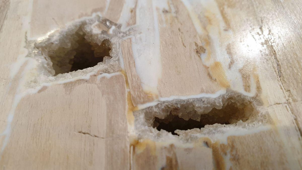 Couchtisch versteinertes Holz 32280