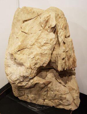 Grabstein versteinertes Holz 29075