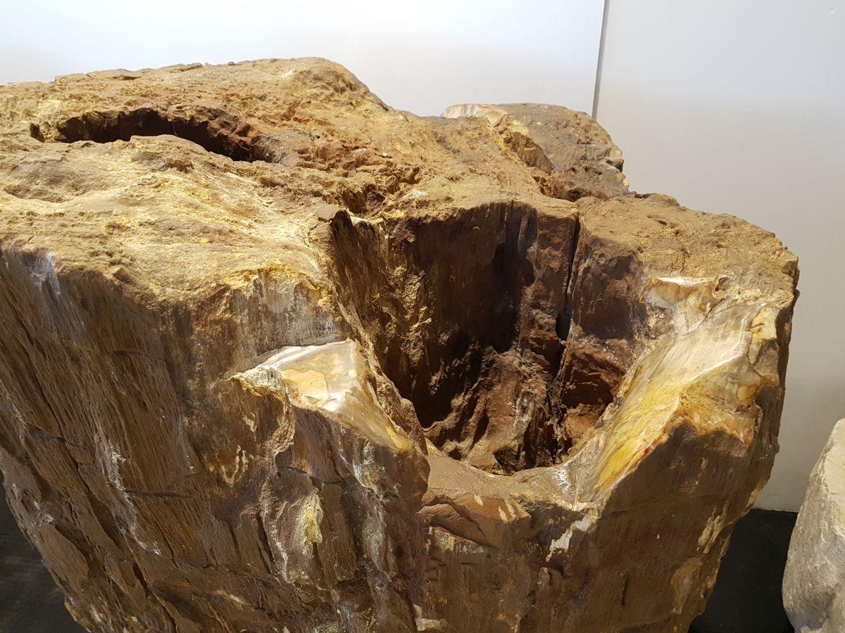 Grabstein versteinertes Holz 29142