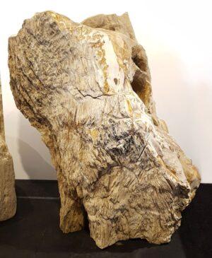 Grabstein versteinertes Holz 30117