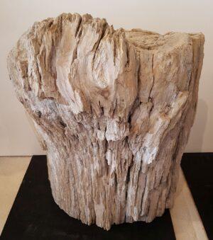 Grabstein versteinertes Holz 31058